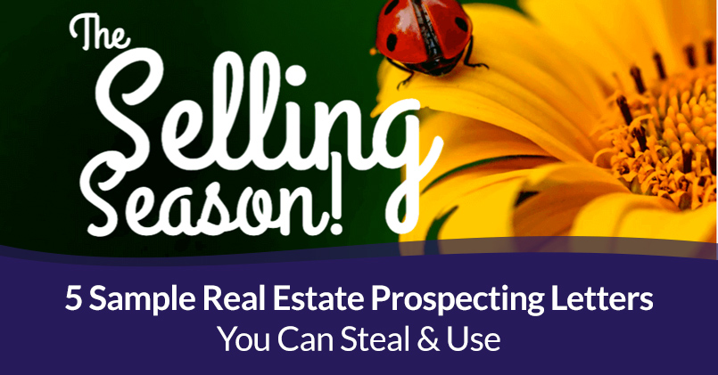 Real Estate Prospecting Letters